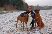 Meine Hunde und ich